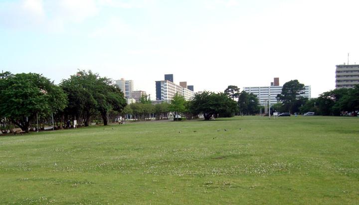 ほとんどが「原っぱ」の稲岸公園(千葉市美浜区)。