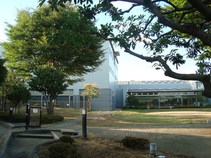 川崎国際交流センター 開放的な庭園