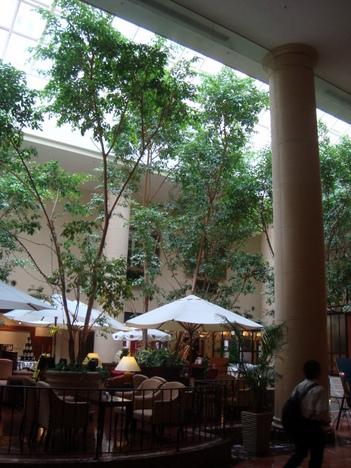 オリエンタルホテル東京ベイの屋内中庭部分
