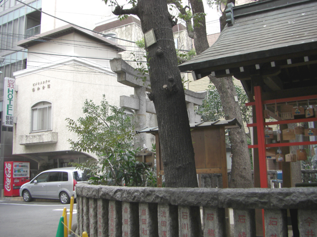 kyowa_kaikan2008b.jpg